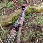 hybrid-traditional-bows-in-woods